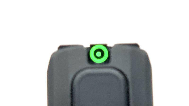 Sig P365 SAS Review Sight Picture